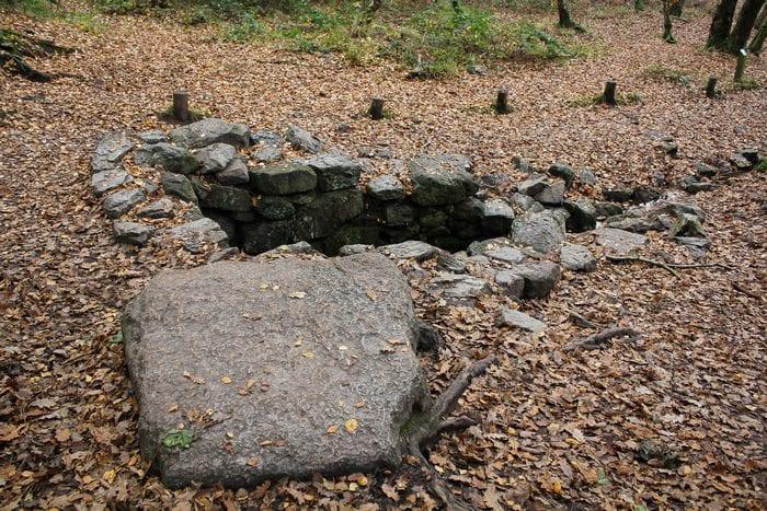 La fontaine de Barenton dans la forêt de Brocéliande