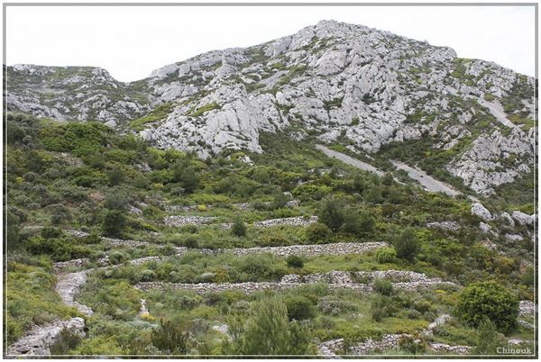 colline amenagée sormiou