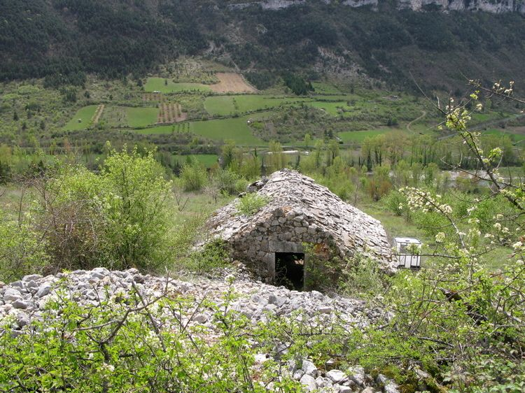 ruine troglodyte dans le tarn