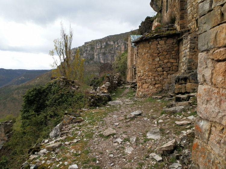 troglodyte dans les gorges du Tarn