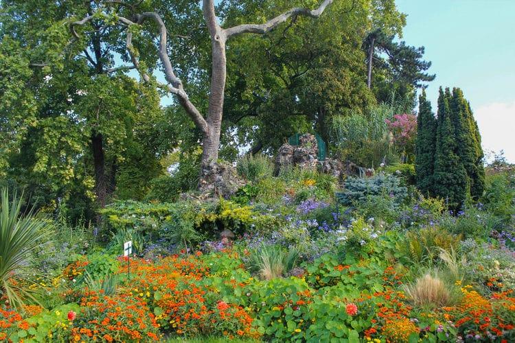 fleurs parc monceau